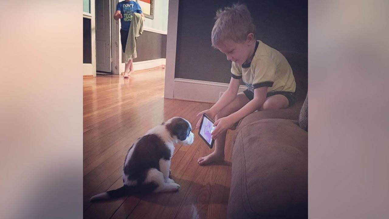 A photo of Lincoln Ball trying to train his new puppy by showing him a YouTube video has gone viral on Facebook. (Daniel and Tasha Ball)
