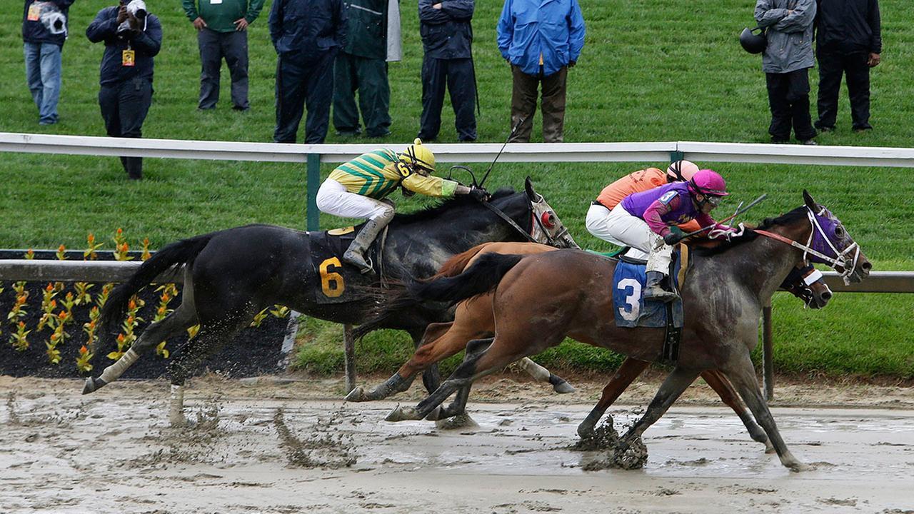Horse Racing Abc13 Com