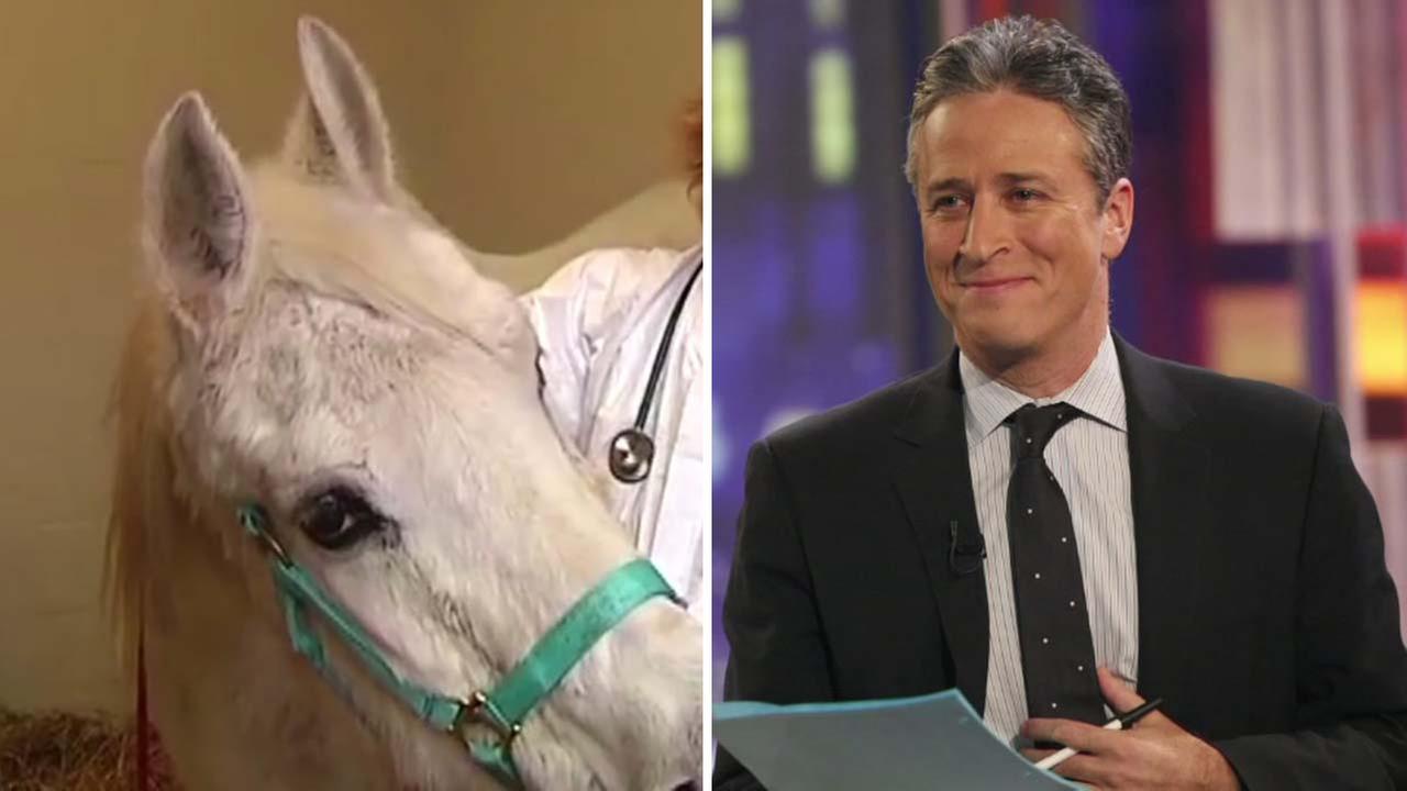Jon Stewart and horse