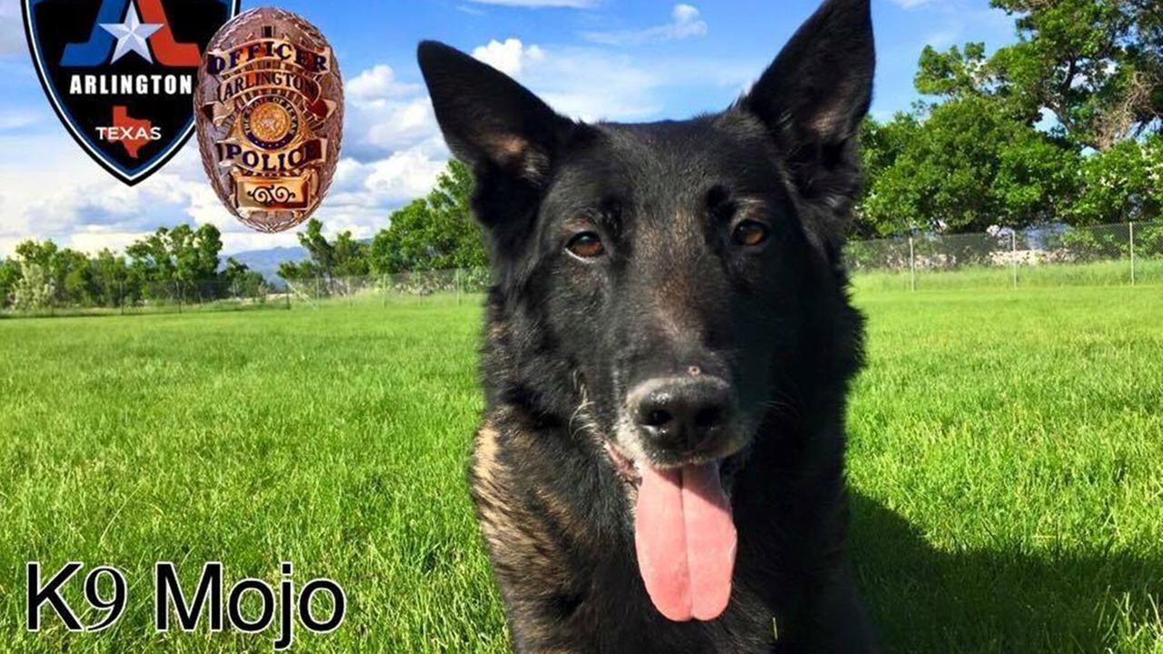 Arlington PD K-9 overcome by heat during suspect search dies