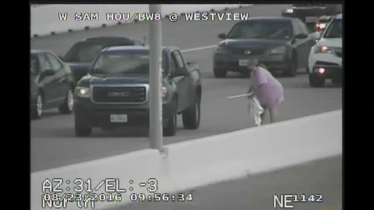 A woman was spotted on traffic cameras chasing a cat down the Sam Houston Tollway.