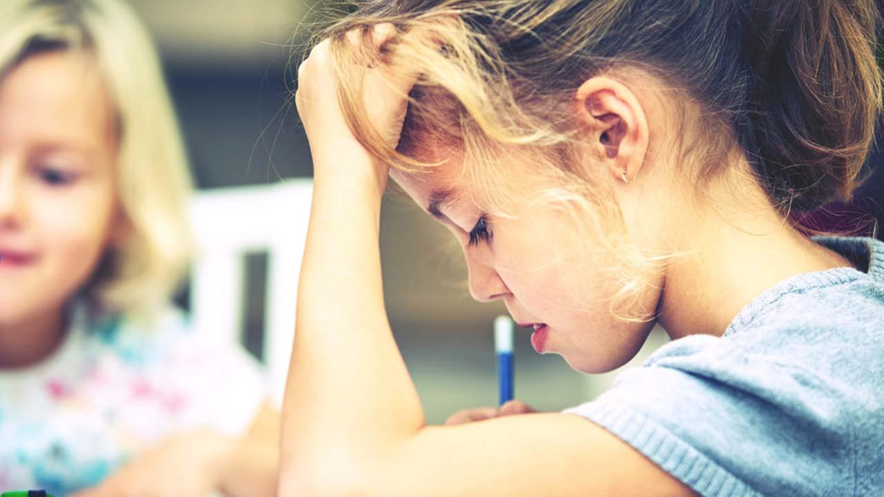 Elementary school bans homework for a year
