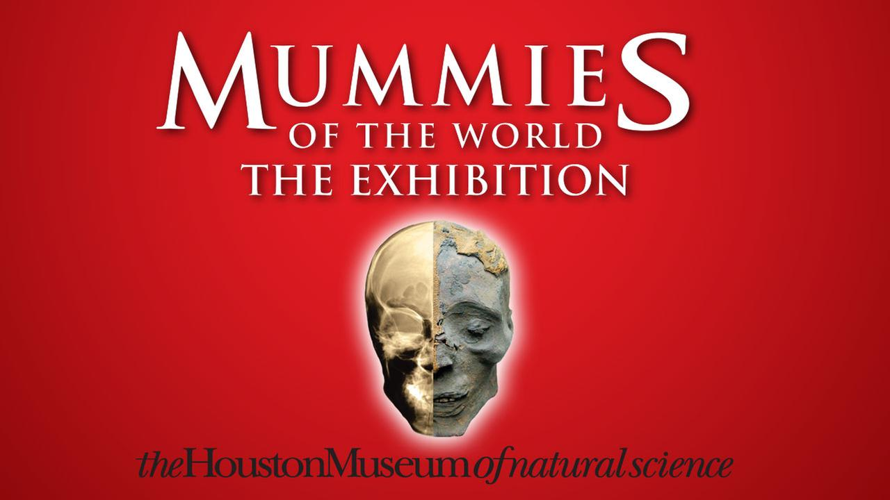 Mummies Of The World at Houston Museum of Natural Science