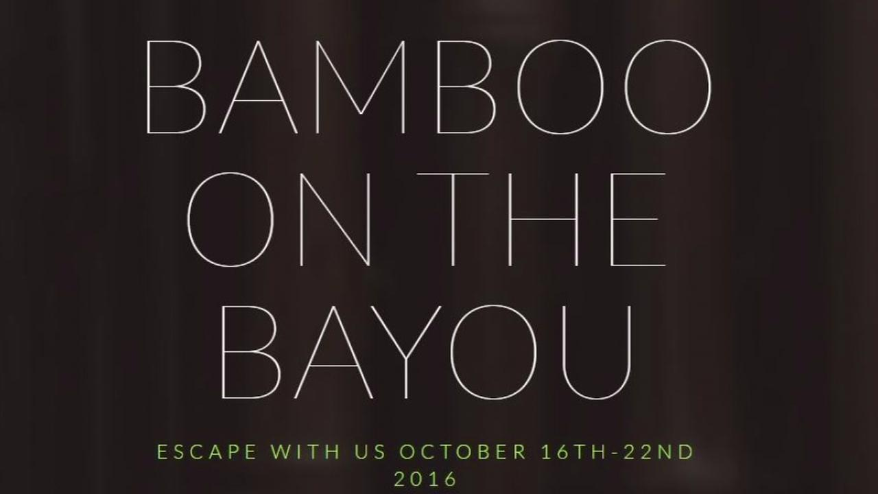 Bamboo on the Bayou