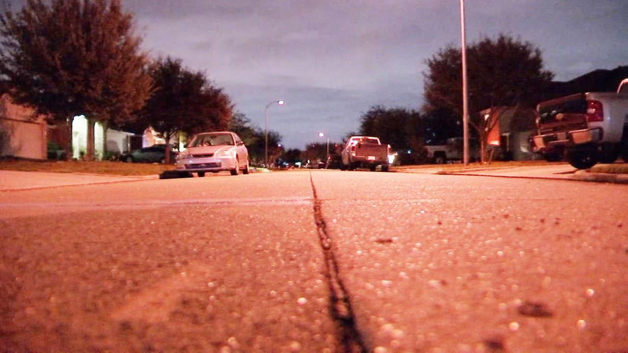 Daryns Landing auto pedestrian