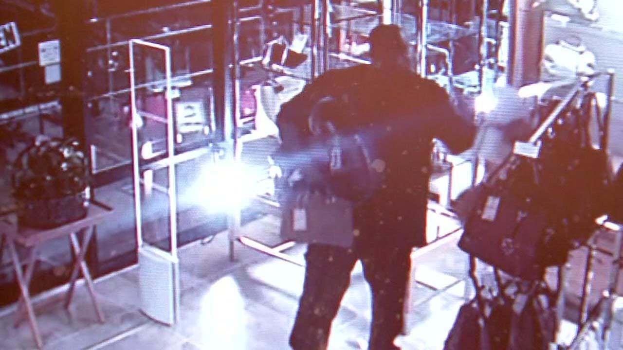Burglar caught stealing purses in Rice Village
