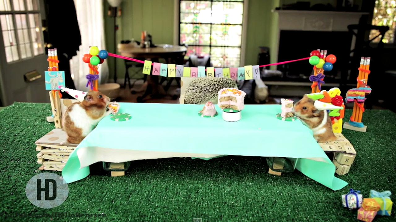 tiny birthday party