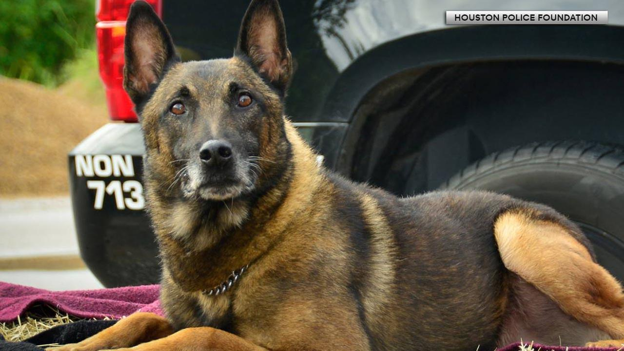Houston K-9 seeks help for vet bills