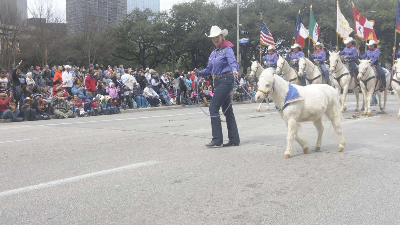 Thousands watch the downtown Houston Rodeo and Livestock Parade on Saturday, March 4, 2017.
