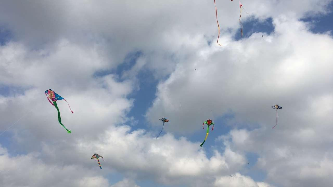 Kite fliers of all kinds came out to Hermann Park on Sunday, March 26, 2017.Britt Guarglia