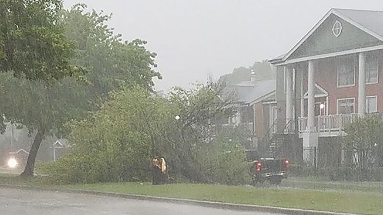 Storm damage in the Houston area