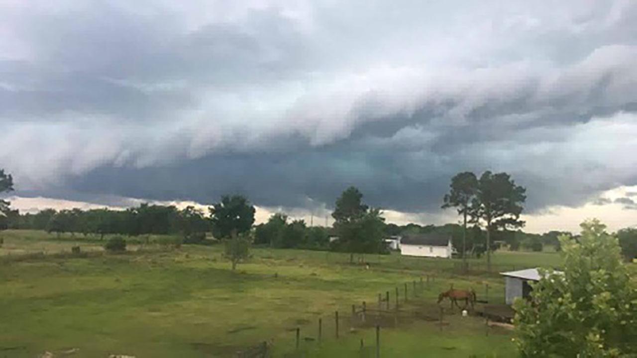 Storm damage in Needville.Irene Becerra