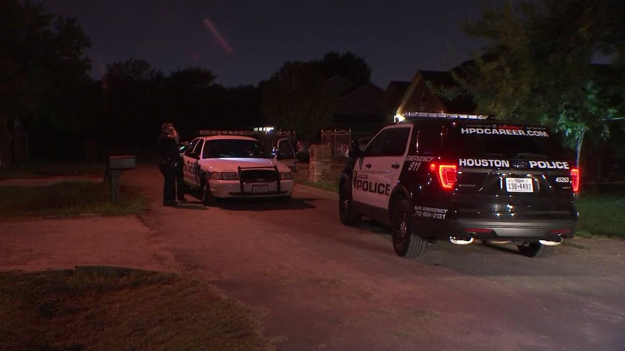 Teen shot in the hip after going outside to investigate noise.