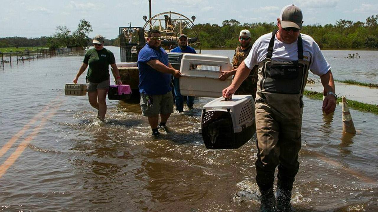 Crews from zoos all over Texas helped evacuate animals at the Texas Zoo. Nicolas Galindo/The Victoria Advocate