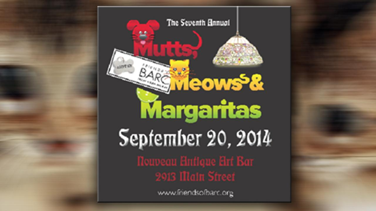 Mutts, Meows and Margaritas event