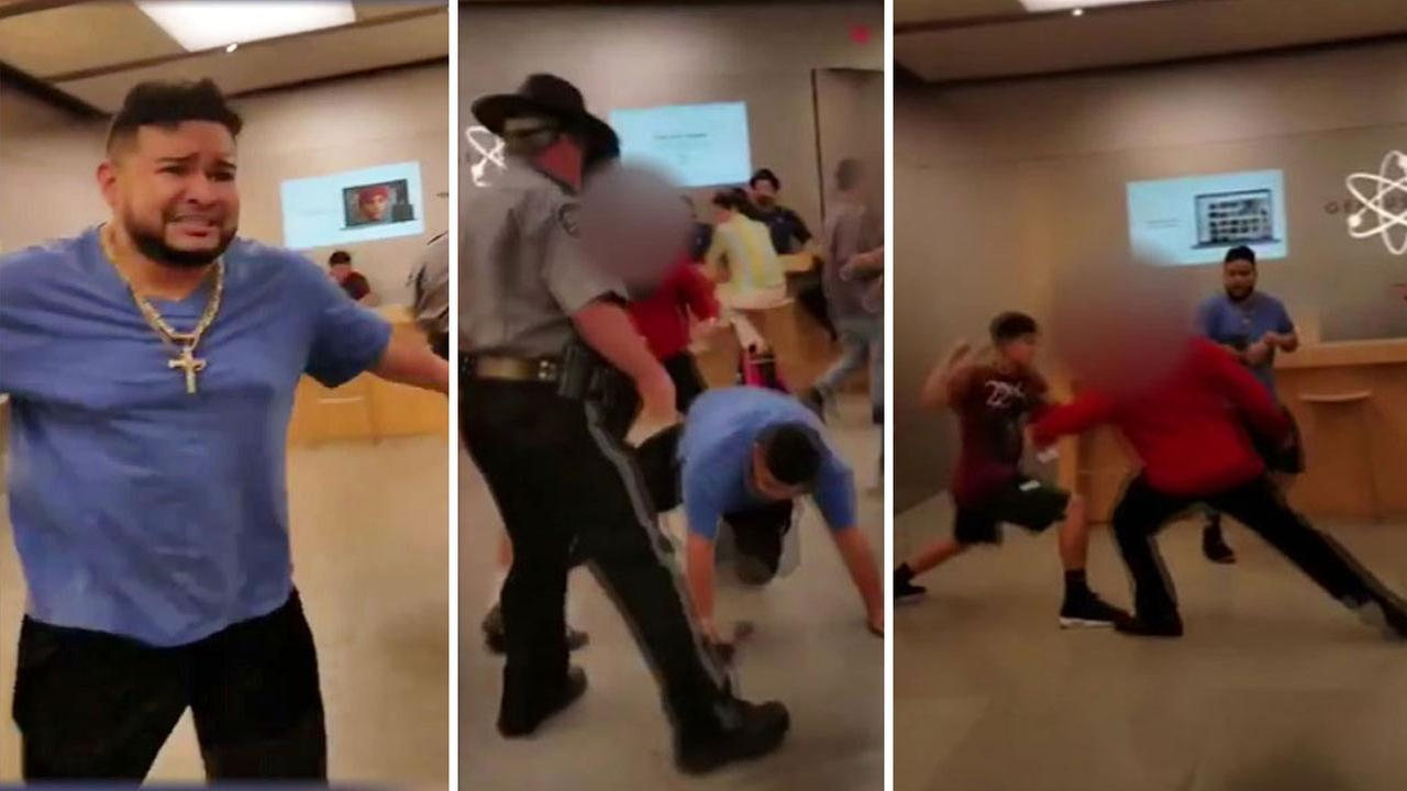 Apple Store brawl