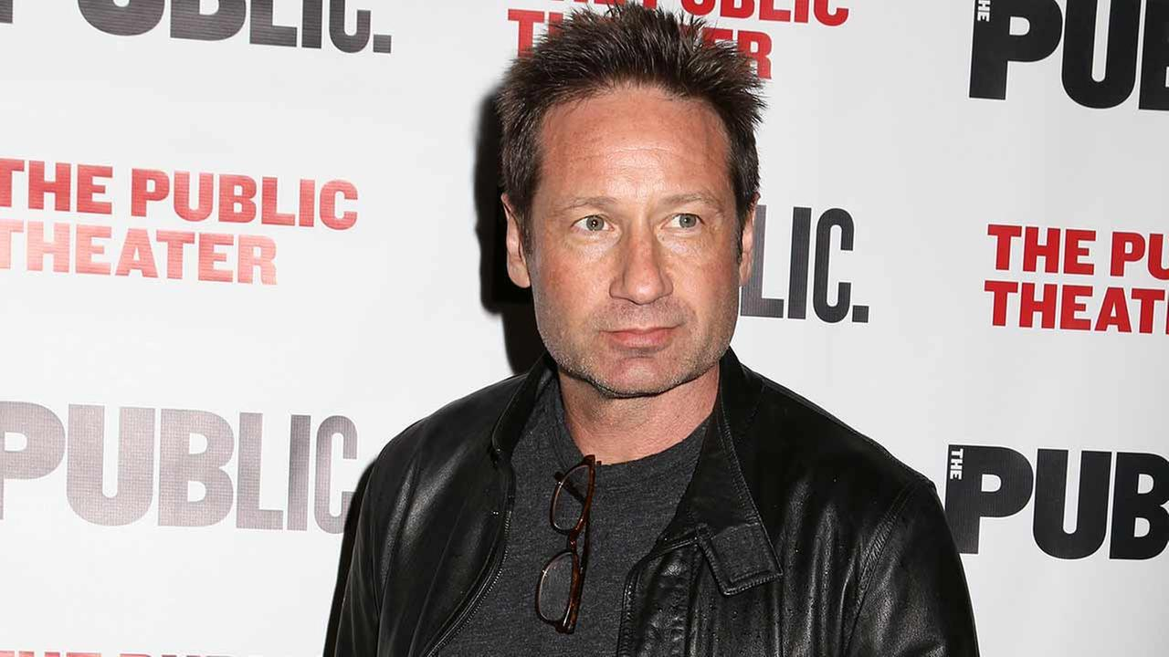 Actor David Duchovny attends the opening night performance of The Library at The Public Theater on Tuesday, April 15, 2014 in New York