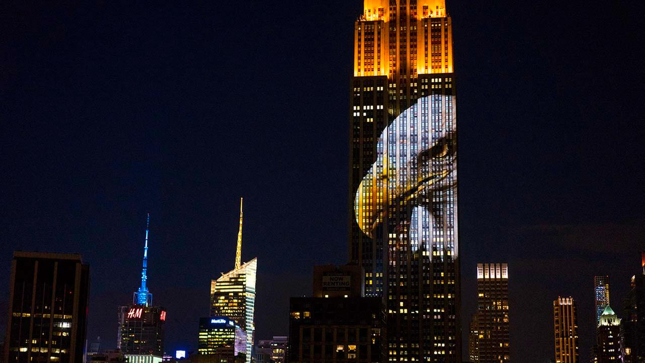 Large images of endangered species are projected on the south facade of The Empire State Building, Saturday, Aug. 1, 2015, in New York