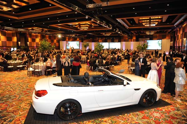 """<div class=""""meta image-caption""""><div class=""""origin-logo origin-image ktrk""""><span>KTRK</span></div><span class=""""caption-text"""">Houston's best dressed and most generous turned heads at the American Heart Association's (AHA) Secret Garden themed Heart Ball.</span></div>"""