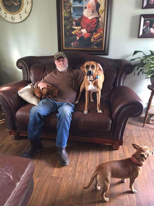 """<div class=""""meta image-caption""""><div class=""""origin-logo origin-image none""""><span>none</span></div><span class=""""caption-text"""">Firefighters raise money to help two dogs who survived a deadly accident</span></div>"""