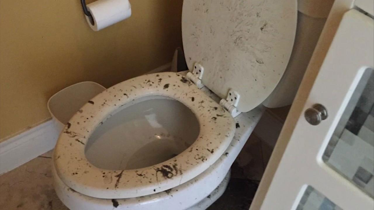 Houstonian: City is flat out lying to get out of paying for poop cleanup