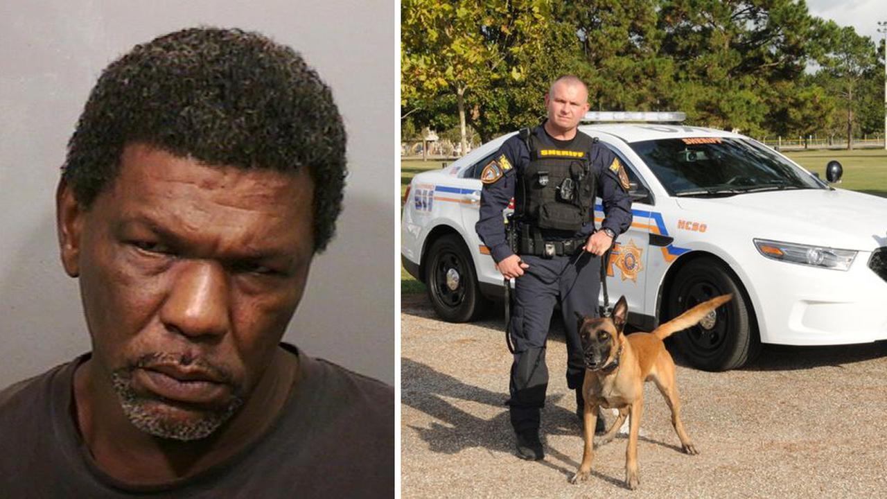 HCSO: Sergeant, K-9 officer take down burglar caught in act