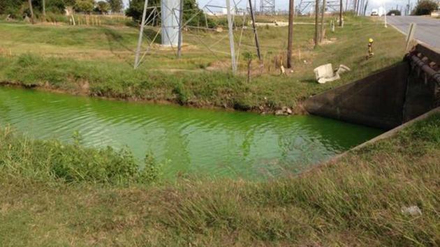 Neon Water Park Neon Green Water Flowing