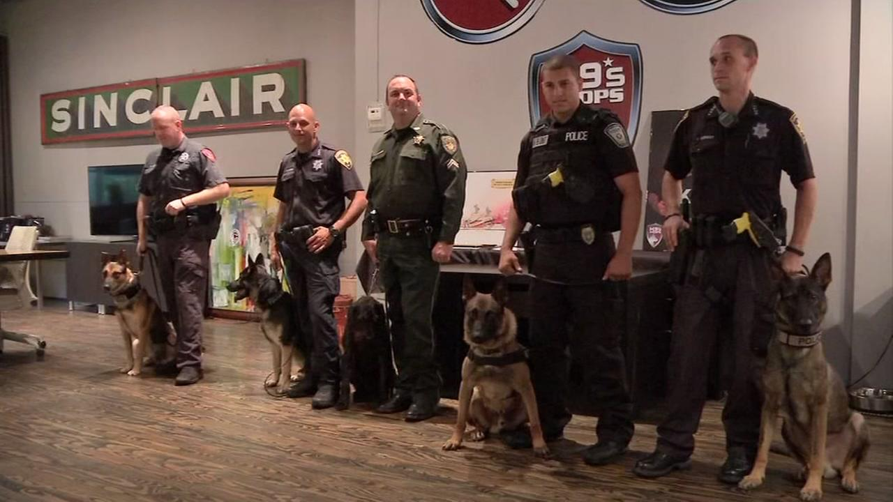 Group gives officers K-9 partners, invaluable sense of security