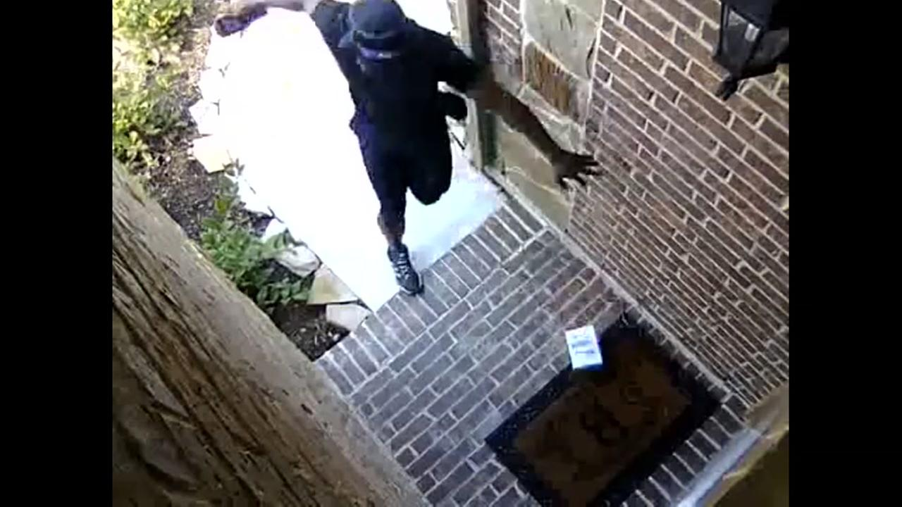 Snake scares delivery driver