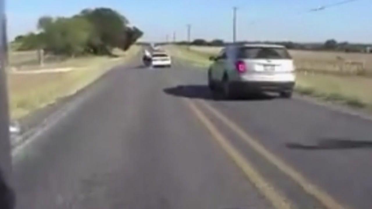 Man blames spider bite for crash