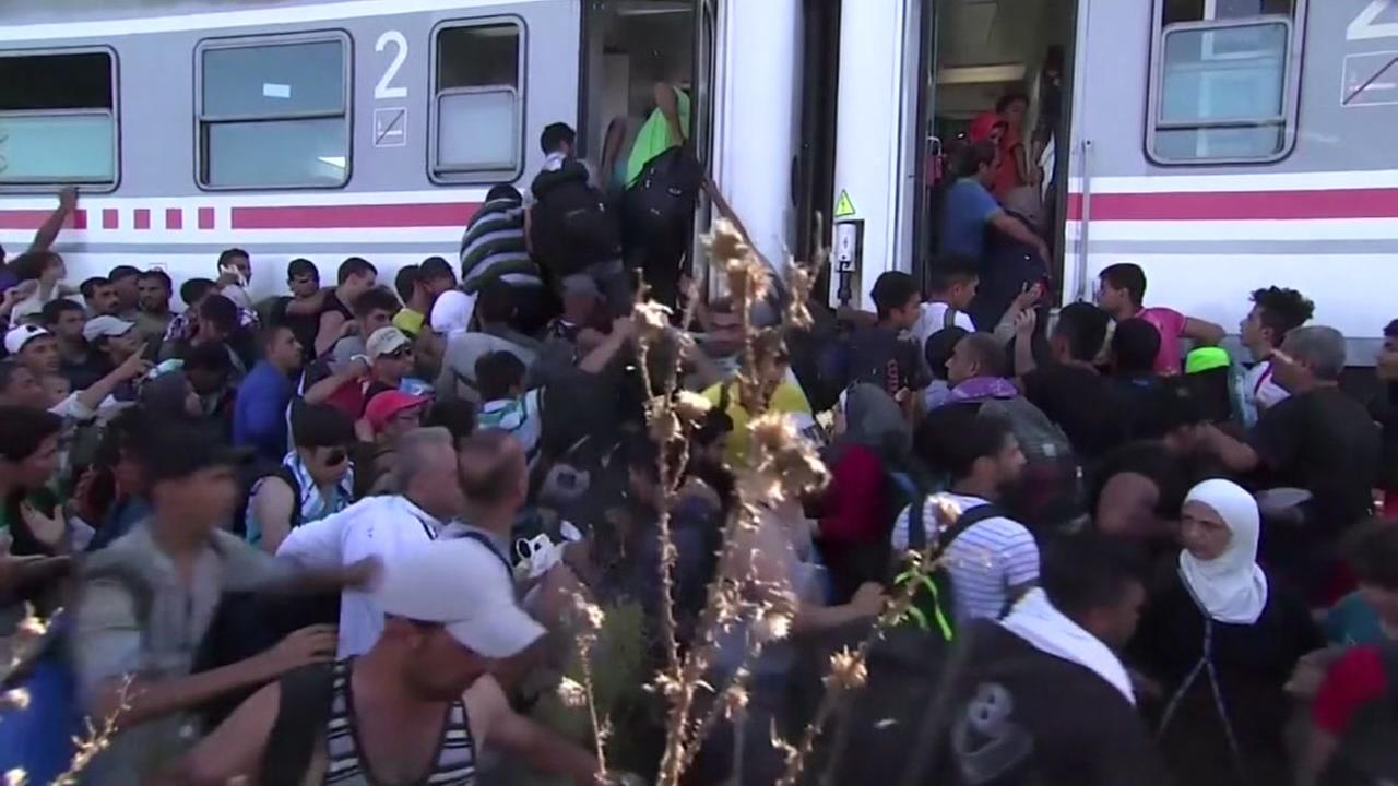 Governors of some states call for stop of Syrian refugees