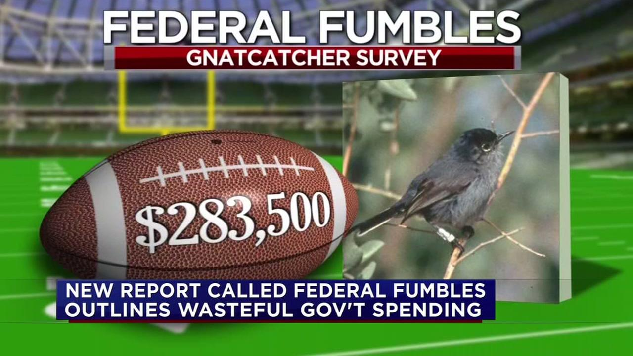 Your tax dollars were used for these bizarre ventures