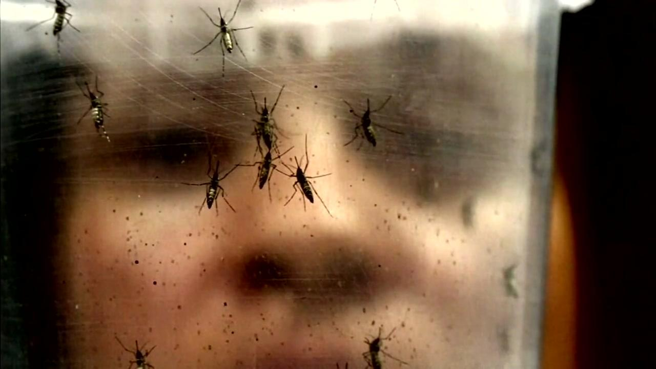Medical expert explains Zika virus