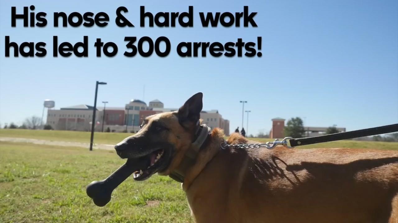 K9 cop Mike retires