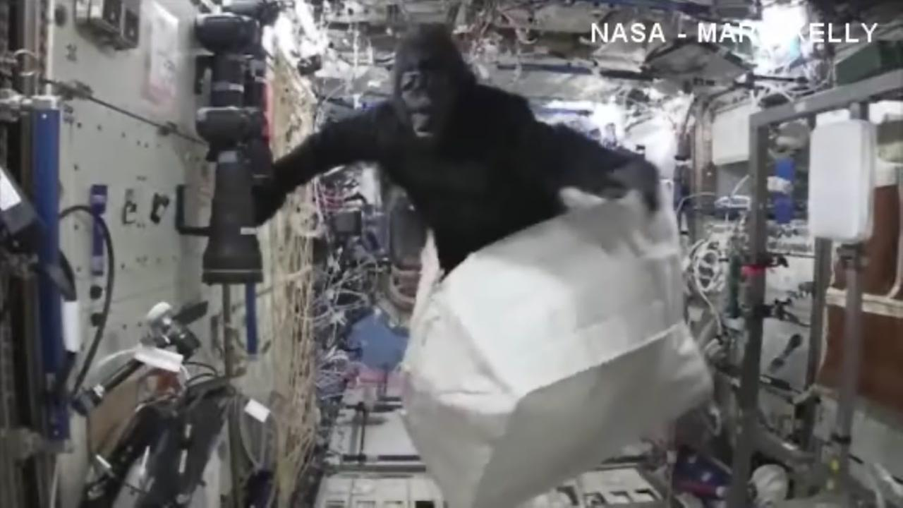 Gorilla flies around ISS