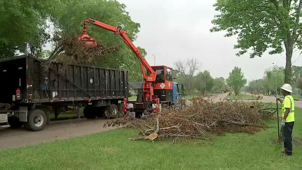 Trash dump no more. Cleanup comes day after abc13 report