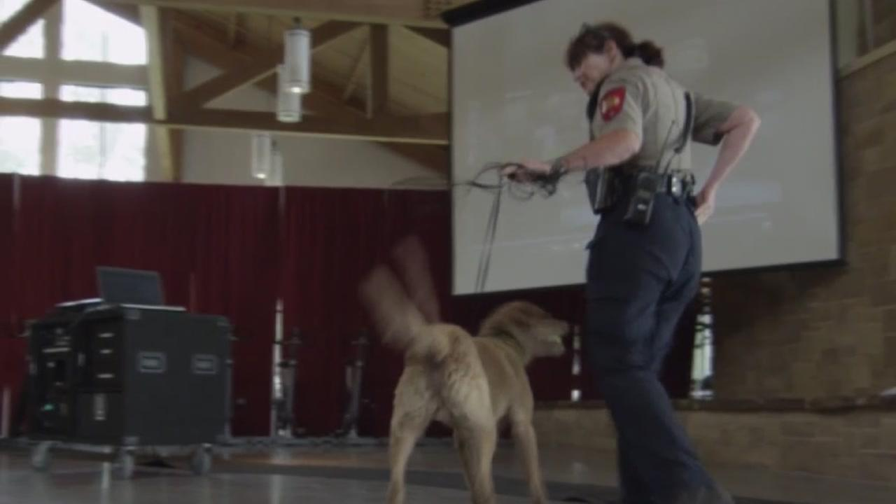 Former deputy fights for custody of police dog