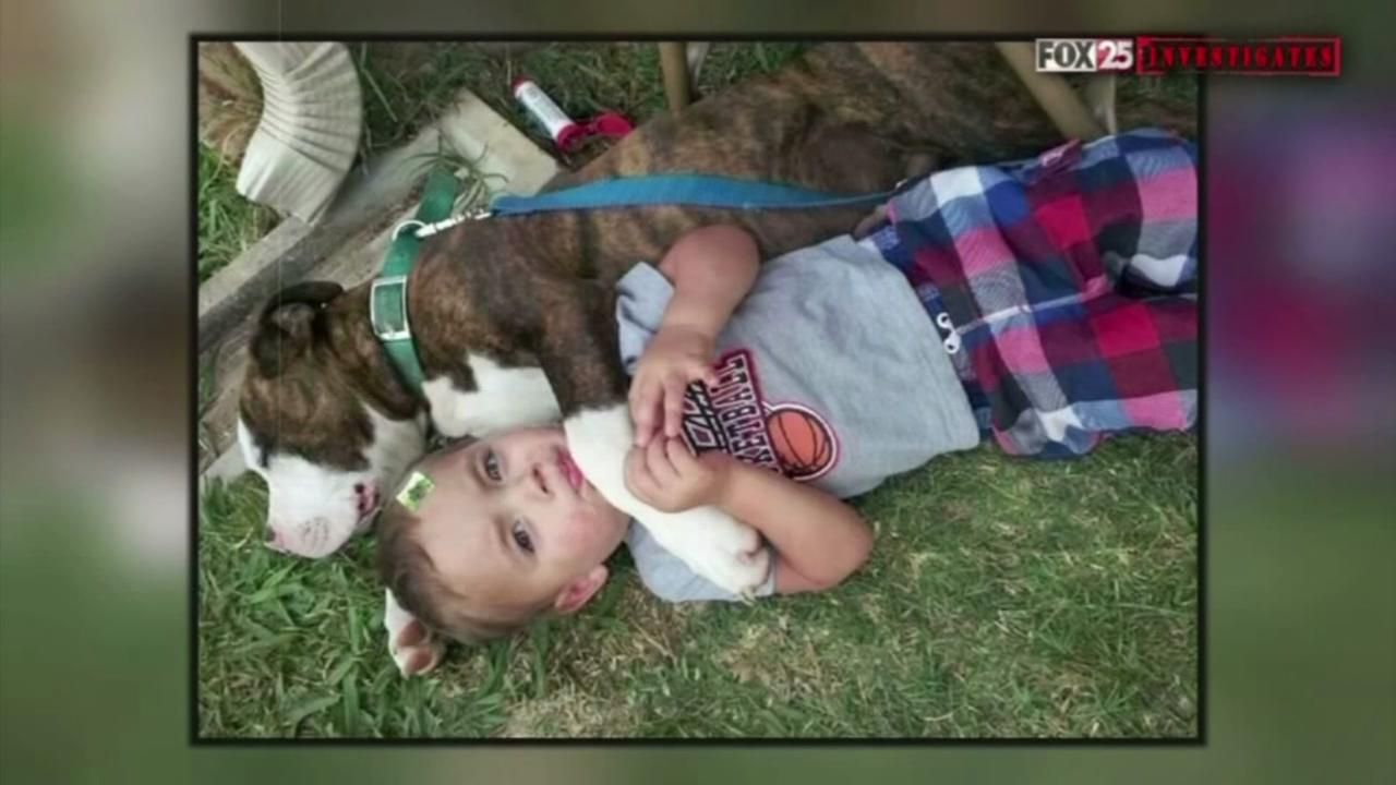 Police kill family dog at childs birthday party