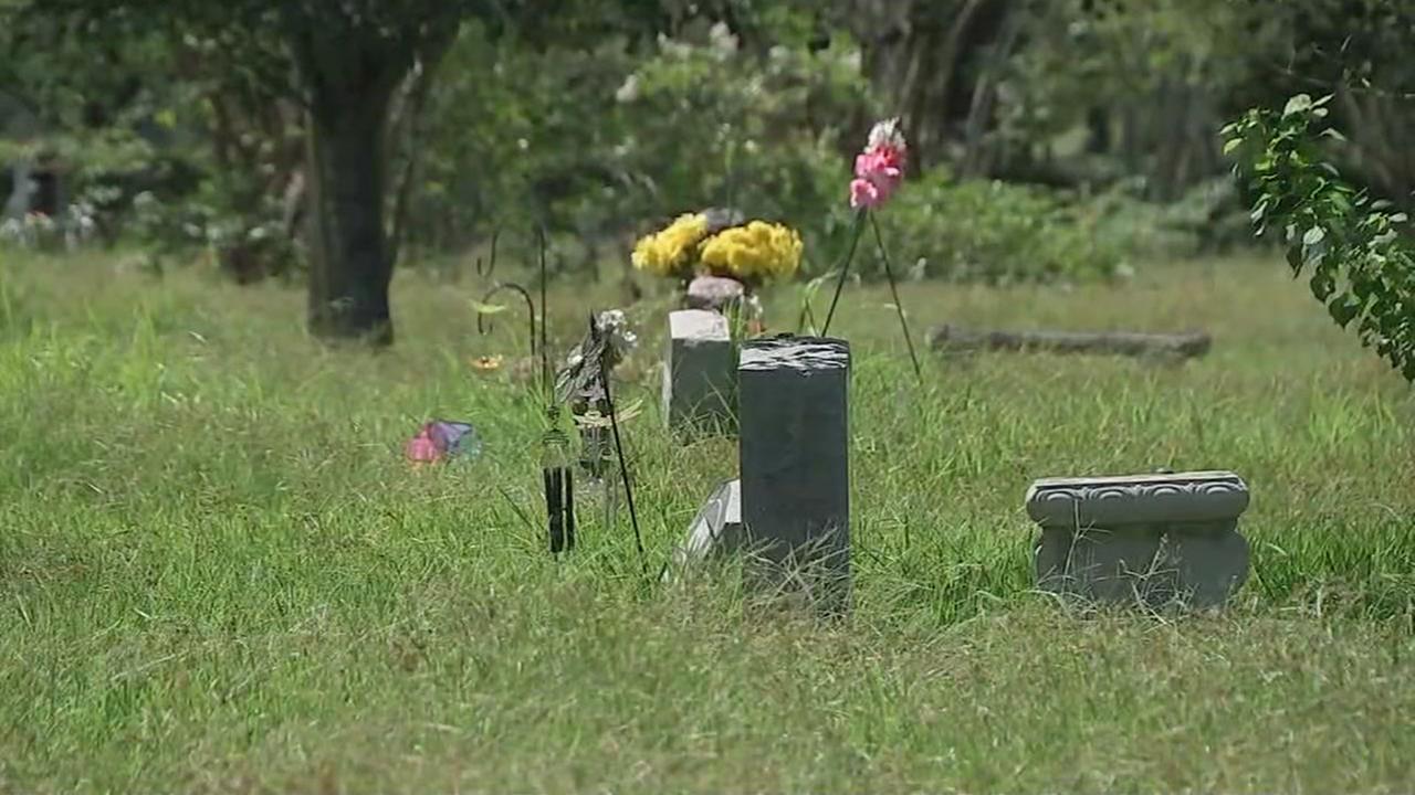 Neighbors urge upkeeps of overgrown La Port cemetery