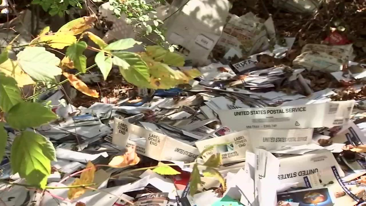 US Postal carrier filmed dumping bins of mail into a ditch