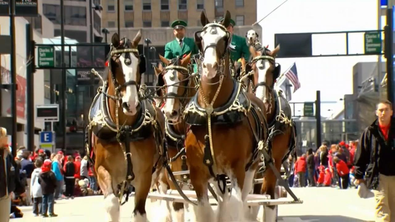 Clydesdales coming to Houston