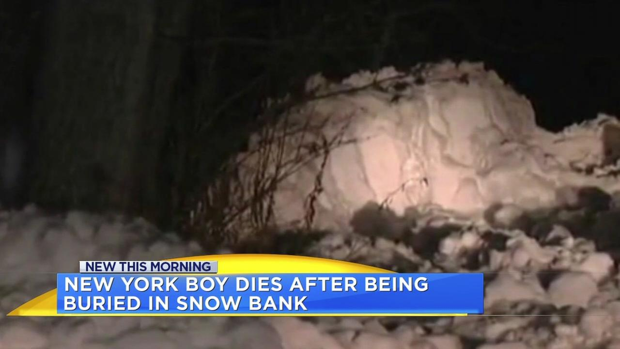 Boy dies after rescued from snow bank