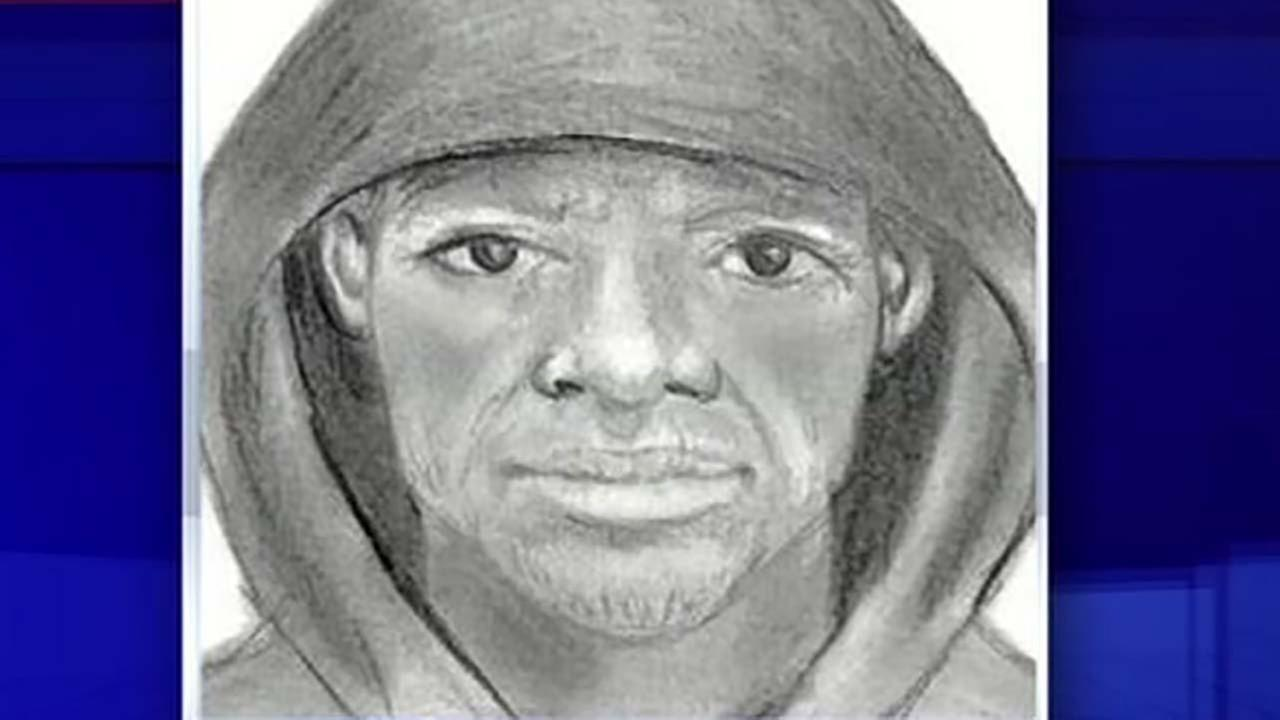 Police searching for robber who ambushed woman