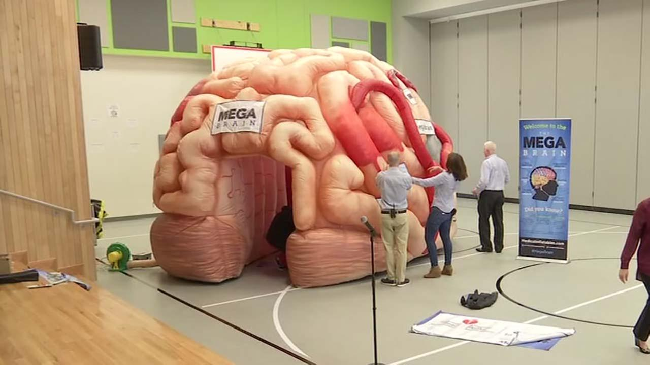 Inflatable brain exhibit educates students on strokes