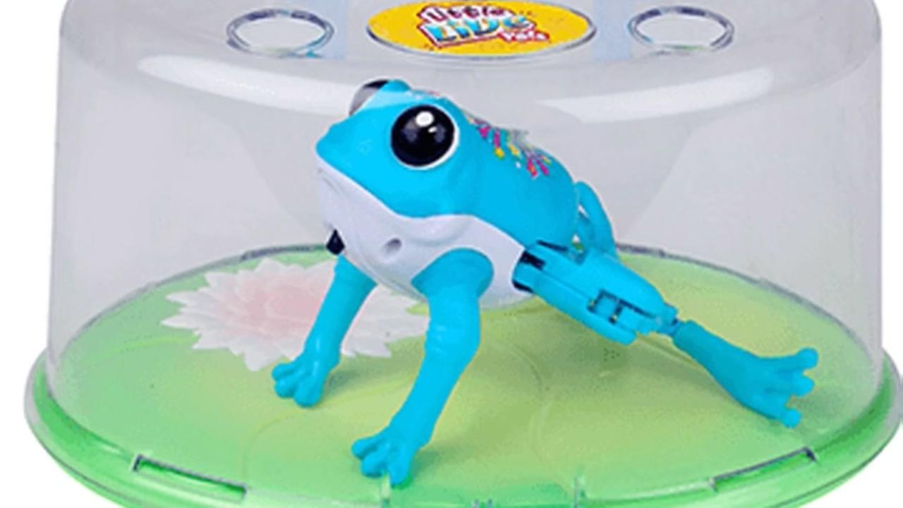 500,000 Live Little Pets frogs recalled