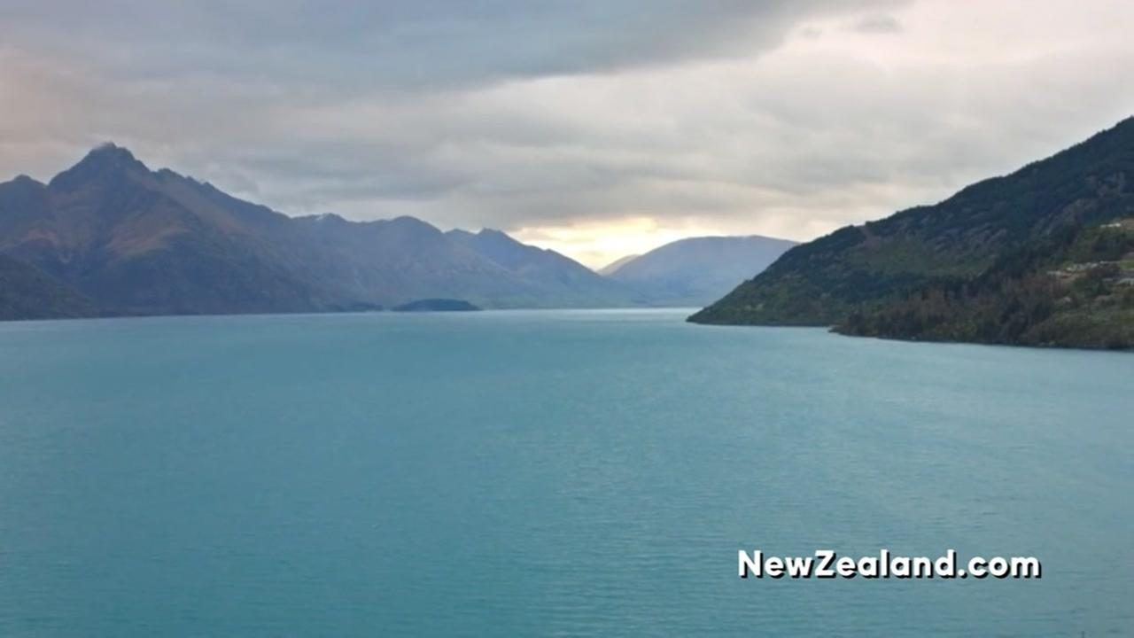 Company offering free trip to New Zealand