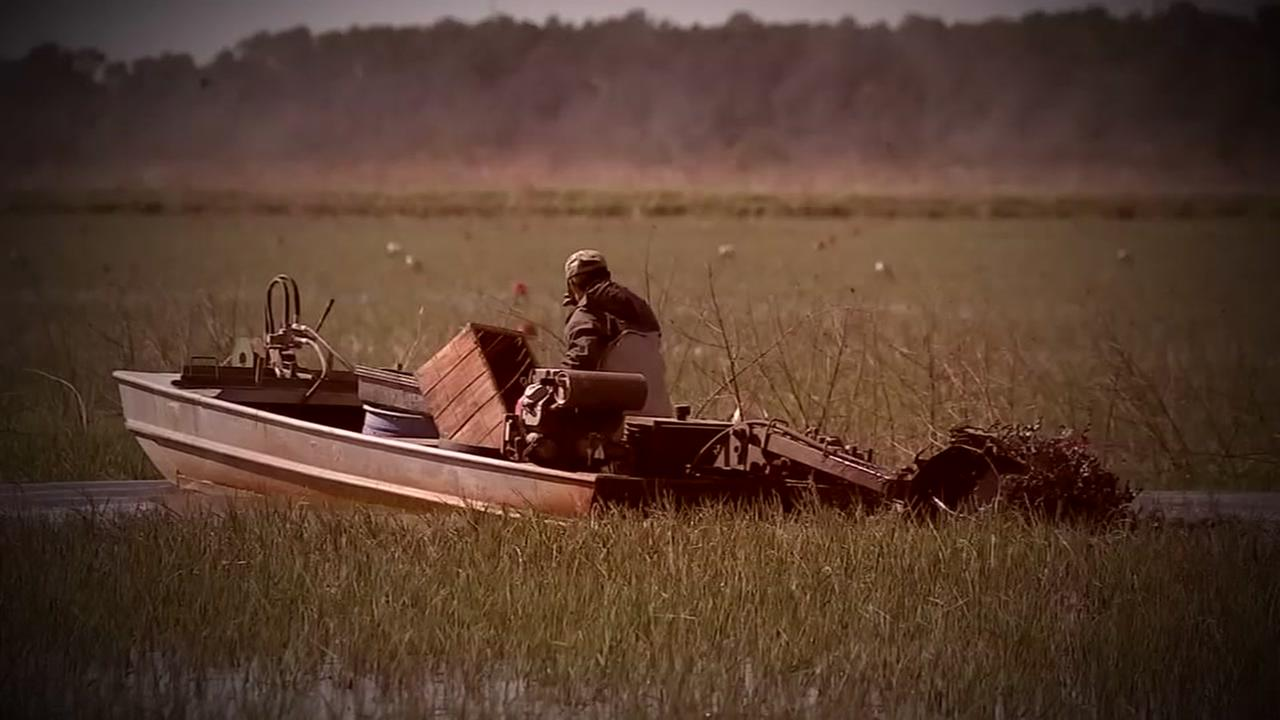 What does it take to catch crawfish?