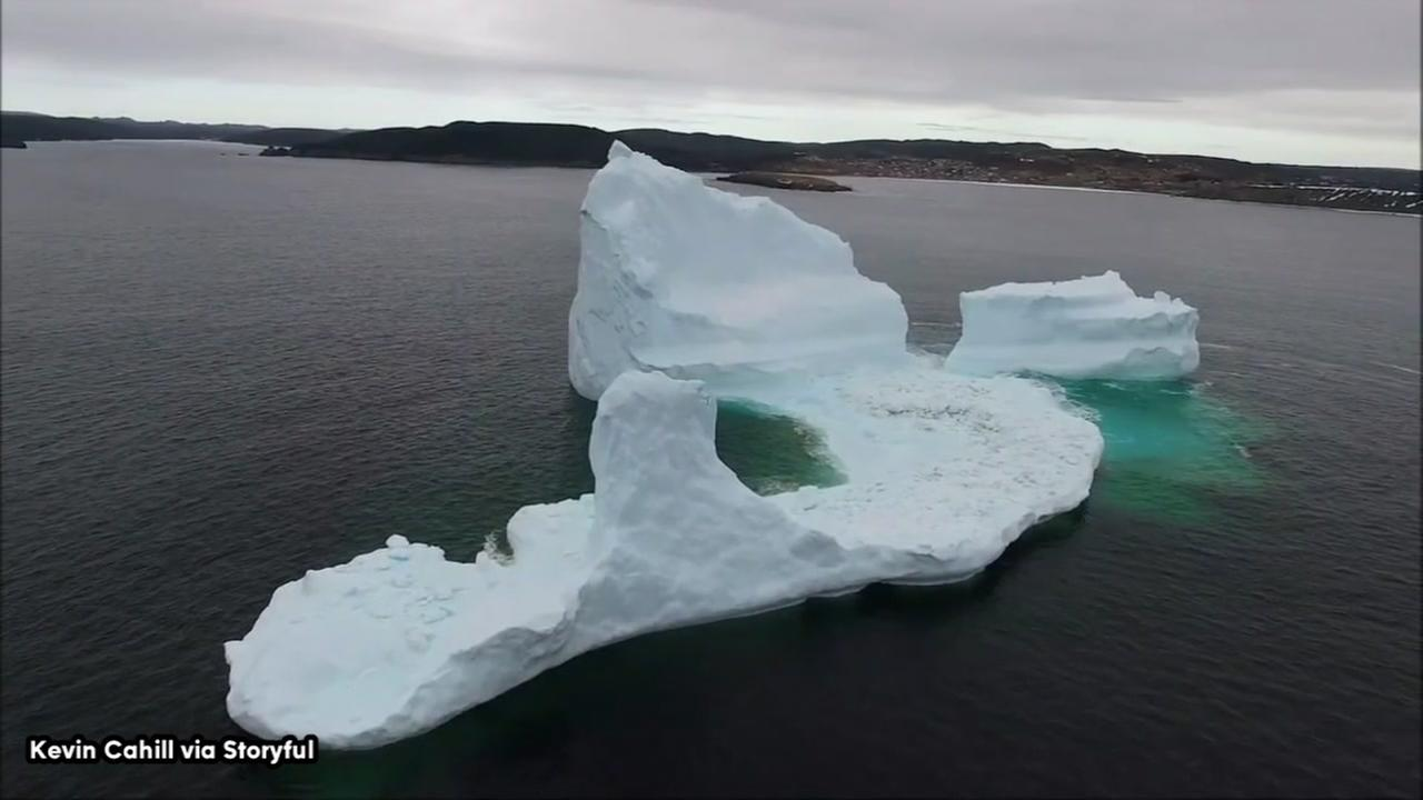 Majestic icebergs dazzle tourists in Canada