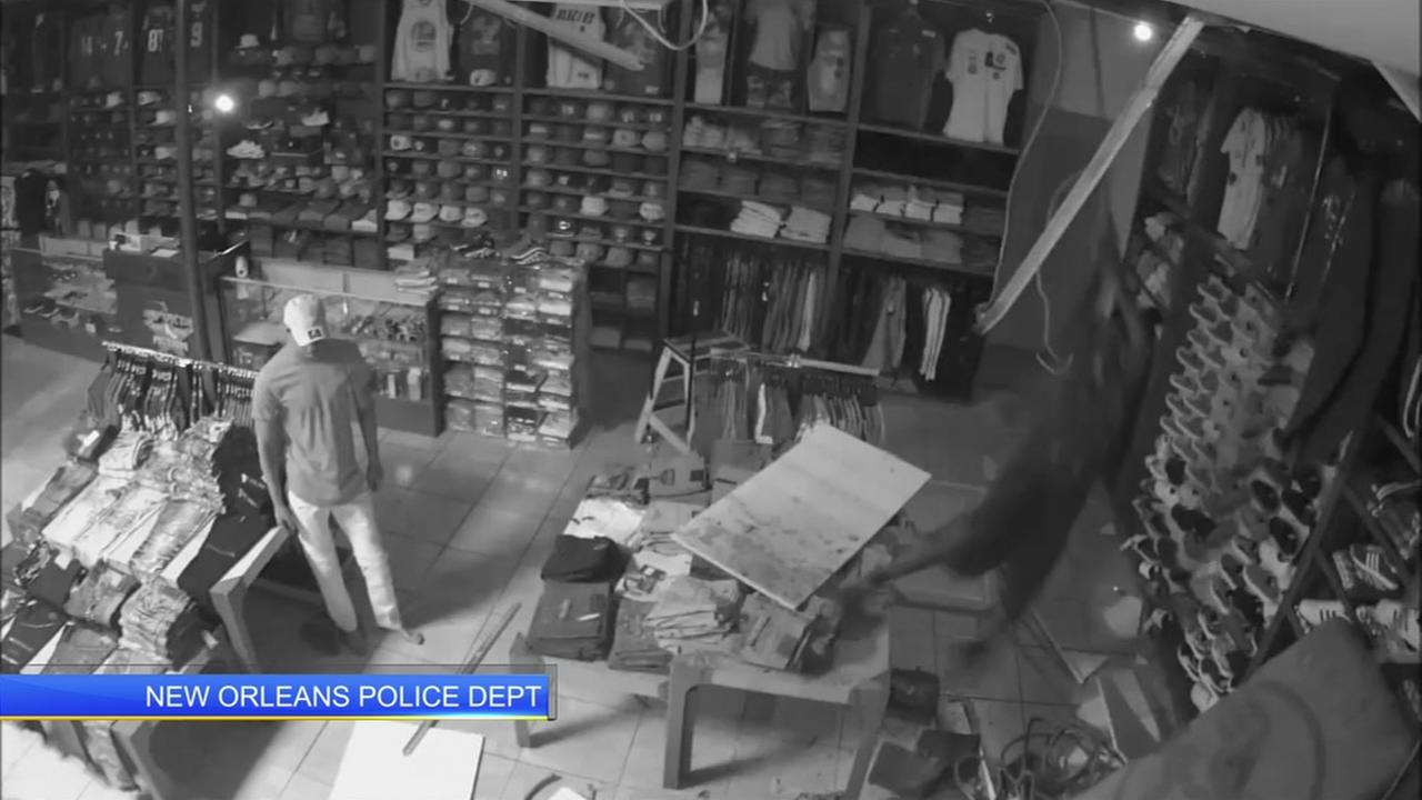 Burglar falls through store ceiling while trying to escape.