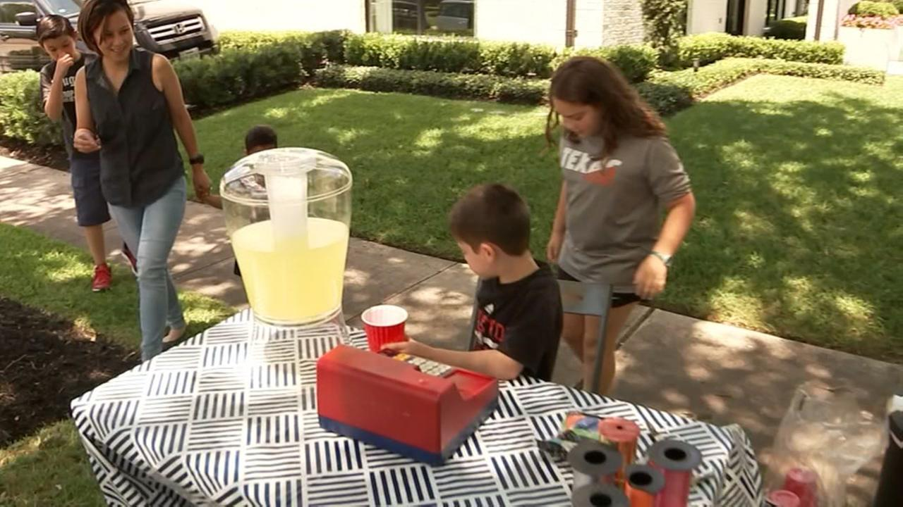 Celebrate National Lemonade Day.